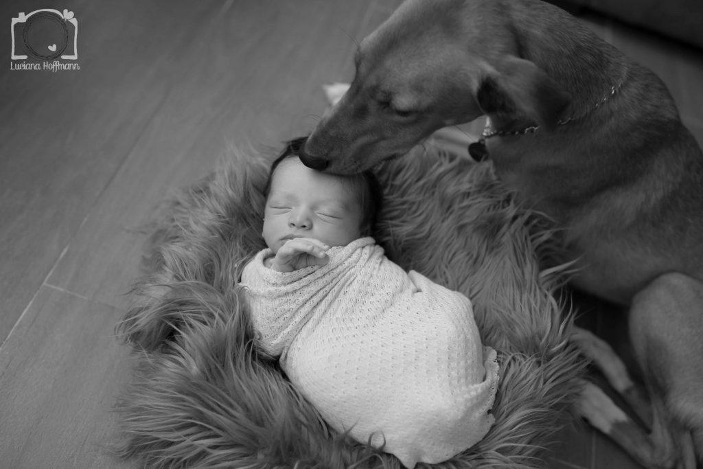 Newborn Miguel 248